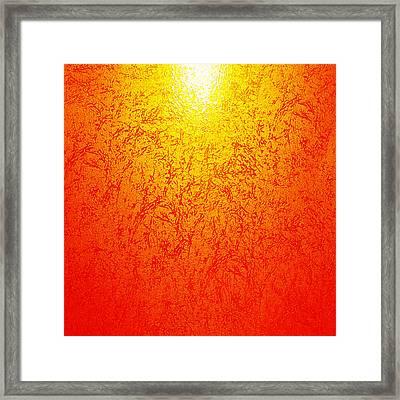 Golden-light Framed Print by Ramon Labusch