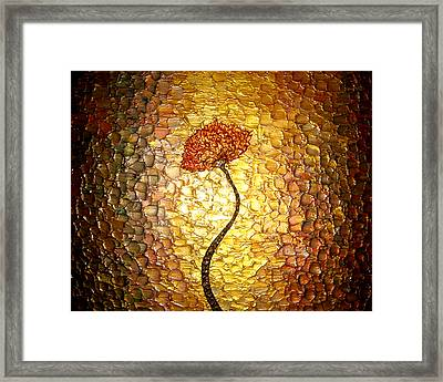 Golden Morning Framed Print by Daniel Lafferty