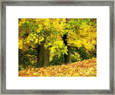 Golden October Framed Print by Angela Doelling AD DESIGN Photo and PhotoArt