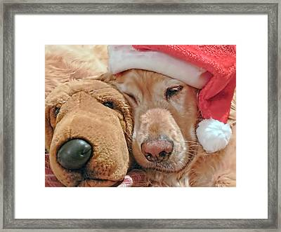 Golden Retriever Dog Santa Hat And Friend Framed Print by Jennie Marie Schell