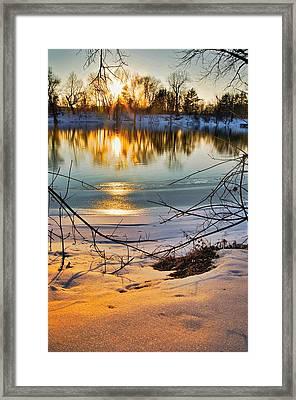 Golden Snow Framed Print by Robert Pearson