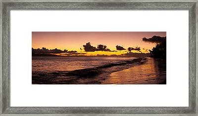 Golden Tide Framed Print by Sun Gallery Photography Lewis Carlyle