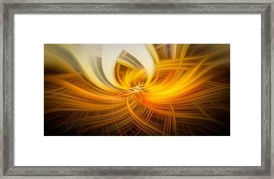Golden Twirls Framed Print by Noah Katz