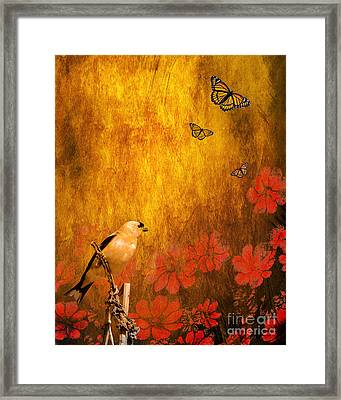 Golden Framed Print by Wingsdomain Art and Photography