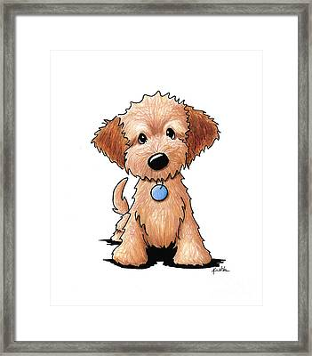 Goldendoodle Puppy Framed Print by Kim Niles
