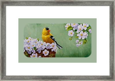 Goldfinch Iphone Case H1 Framed Print by Crista Forest