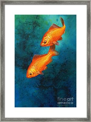Goldfish Framed Print by John Francis