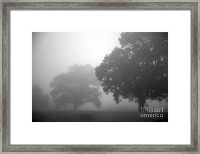 Golf Course With Fog Framed Print by Amanda Barcon