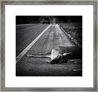 Gone To Greener Pastures Framed Print by Anne Worner