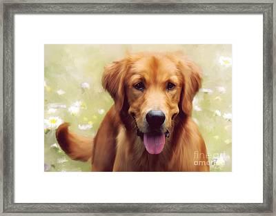 Good Boy Framed Print by Lois Bryan