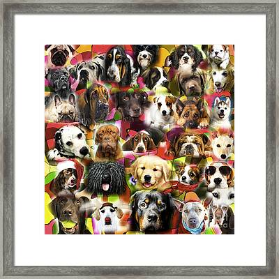 Good Boys Framed Print by John Rizzuto