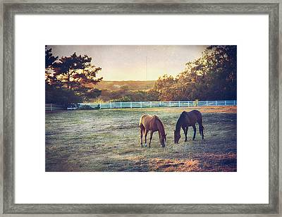 Good Company Framed Print by Laurie Search