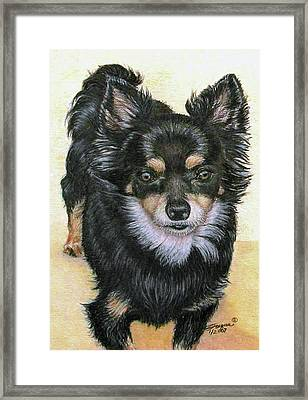 Good Golly Miss Molly Framed Print by Beverly Fuqua