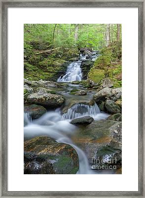 Gordon Falls - Randolph New Hampshire  Framed Print by Erin Paul Donovan