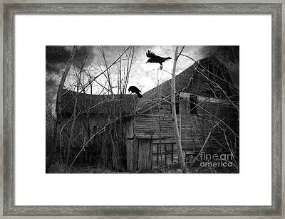Gothic Surreal Haunting Old Barn With Crows Ravens - Spooky Gothic Black White Ravens Flying Framed Print by Kathy Fornal