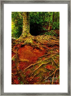 Grab On And Don't Let Go Framed Print by Michael Eingle