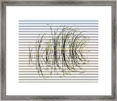 Graceful Grass - The Slat Collection Framed Print by Bill Kesler