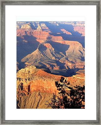 Grand Canyon 50 Framed Print by Will Borden