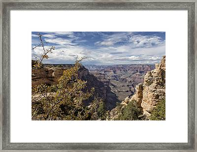 Grand Canyon No. 7  Framed Print by Belinda Greb