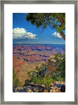 Grand Canyon Vista Framed Print by William Wetmore