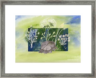 Grand Ladies Of The Field Framed Print by Conni Schaftenaar