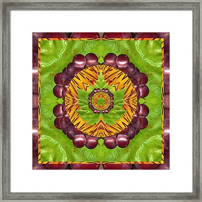Grape Domain Framed Print by Bell And Todd