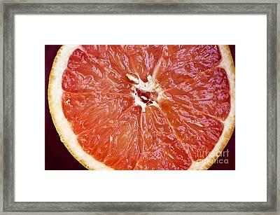 Grapefruit Half Framed Print by Ray Laskowitz - Printscapes
