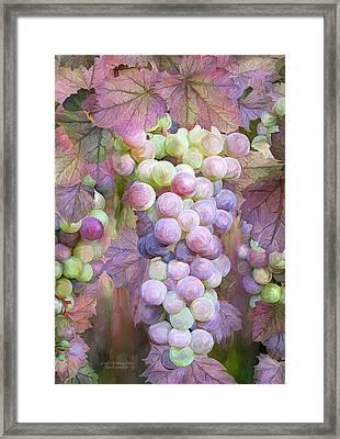 Grapes Of Many Colors Framed Print by Carol Cavalaris
