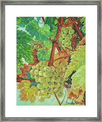 Grapes Provencale Framed Print by Danielle Perry