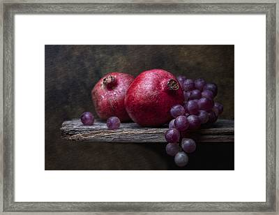 Grapes With Pomegranates Framed Print by Tom Mc Nemar