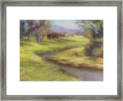 Grassy Meadow Framed Print by Patricia Seitz