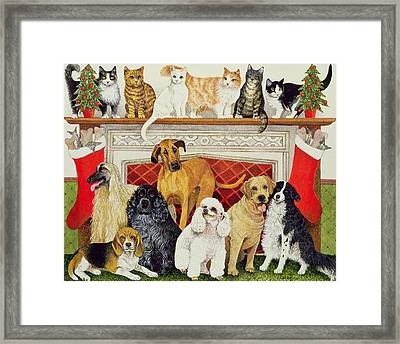 Great Expectations Framed Print by Pat Scott