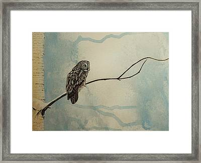Great Gray Owl Framed Print by Lucy Deane