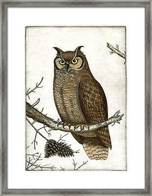 Great Horned Owl Framed Print by Charles Harden