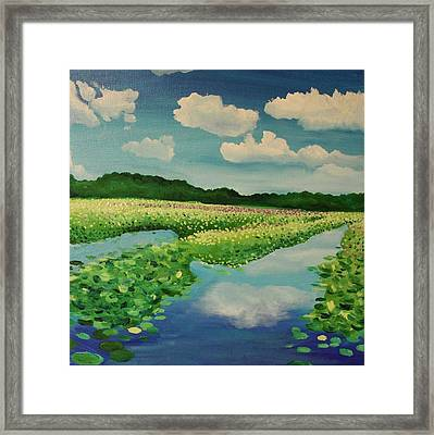 Great Meadows Framed Print by Sarah Iwany