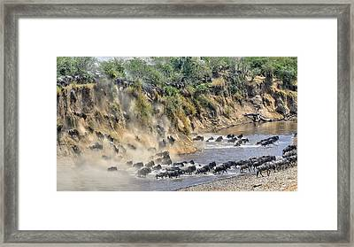 Great Migration Framed Print by Hua Zhu