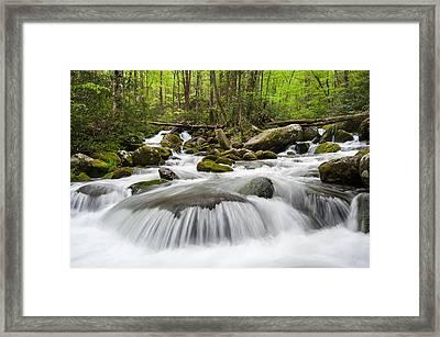 Great Smoky Mountain Roaring Fork Spring Cascade Framed Print by Mark VanDyke