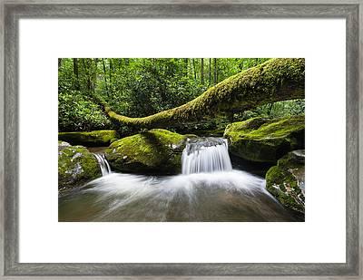 Great Smoky Mountains National Park Roaring Fork Framed Print by Mark VanDyke