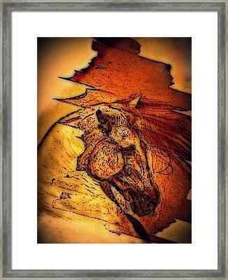 Greek Horse Framed Print by Paulo Zerbato