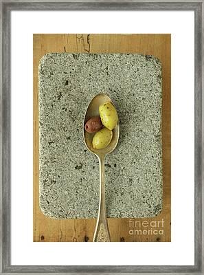 Greek Olives Framed Print by Edward Fielding