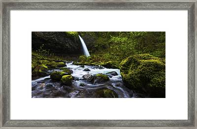 Green Avenue Framed Print by Chad Dutson