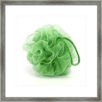 Green Bath Puff Framed Print by Blink Images