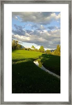 Green Day Framed Print by Giuseppe Epifani