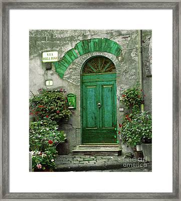 Green Door Framed Print by Karen Lewis
