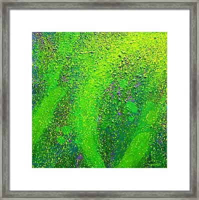 Green Everywhere Framed Print by John  Nolan