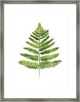 Green Ferns Watercolor Poster Framed Print by Joanna Szmerdt