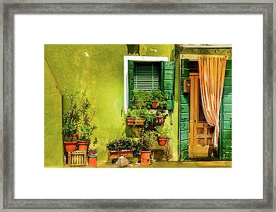 Green House Burano Italy Framed Print by Xavier Cardell