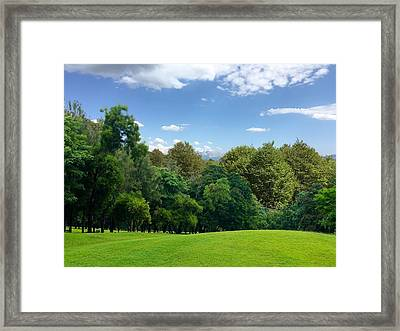 Green Land Framed Print by Contemporary Art