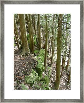 Green Ledge Framed Print by Peter  McIntosh