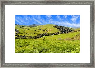 Green Meadow Santa Ynez Valley Ca Framed Print by Eyal Nahmias